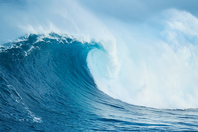 Waiting for the Silver Tsunami to Save Senior Living? Don't Hold Your Breath!