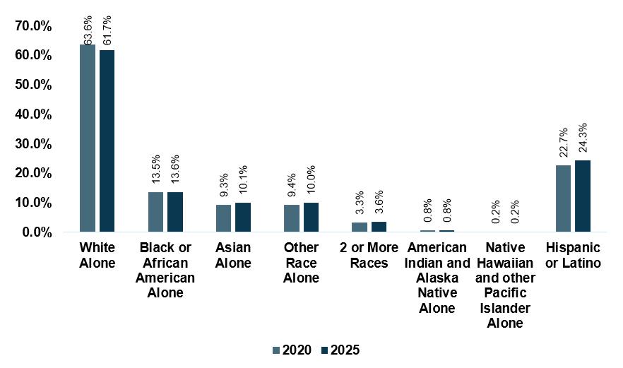 Demographics of workforce